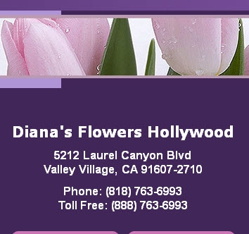 Diana's Flowers Hollywood