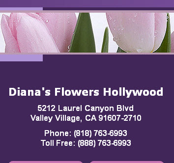 Dianas Flowers Hollywood