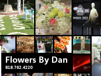 Flowers By Dan